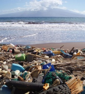 Plastic garbage washes up on the Hawaiian island of Kaho'olawe. (Photo: NOAA)