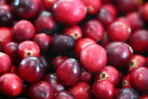 Cranberries for Thanksgiving in Cape Cod Times